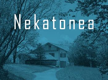 Nekatoenea